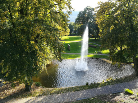 Die Villa Berberich mit Park