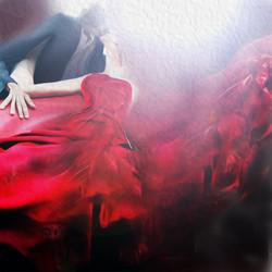 fine art red christina copy