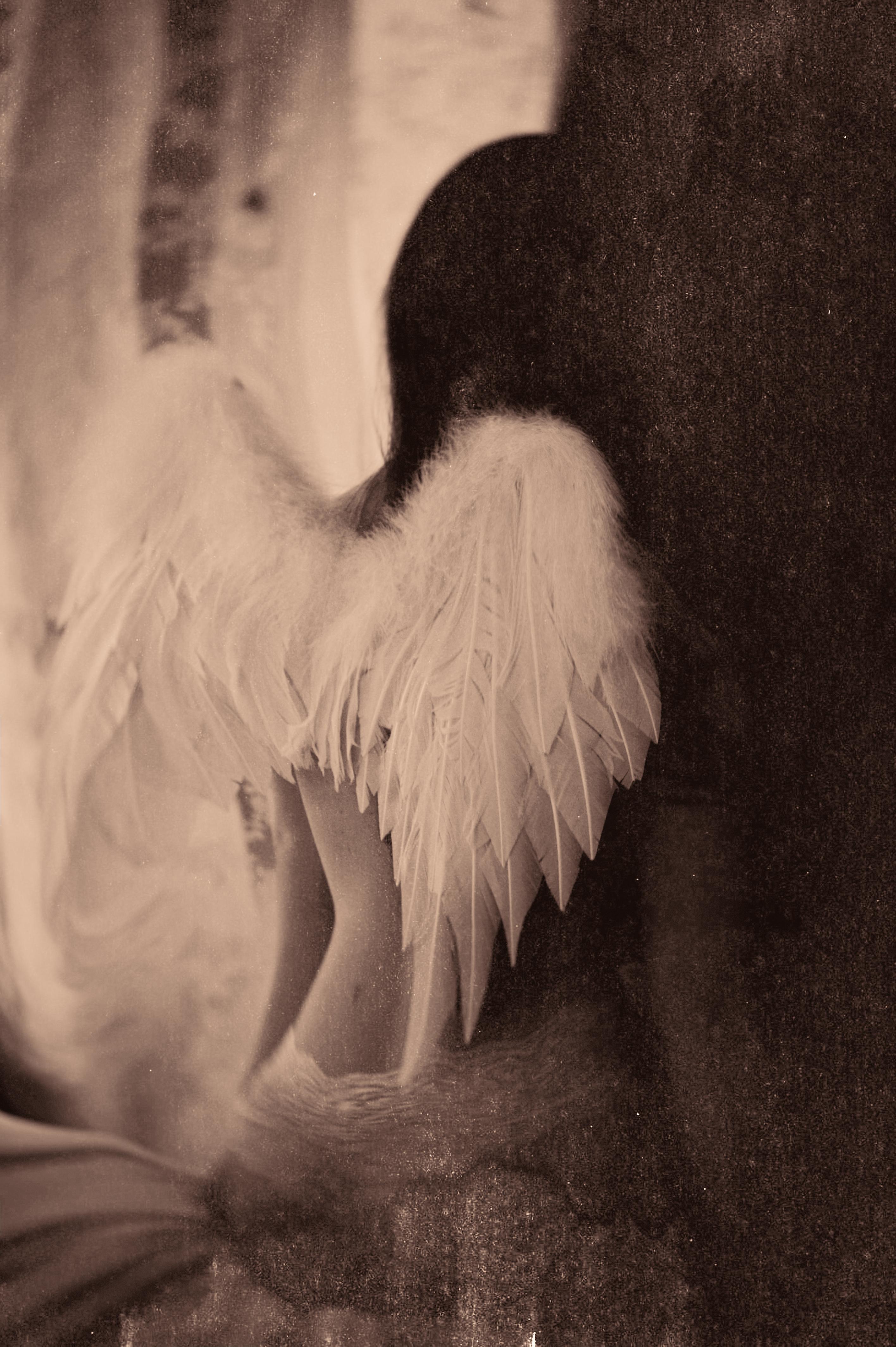 _DSC8-boudoir magdaphoto copy