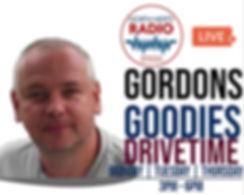 gordons goodies promo.jpg