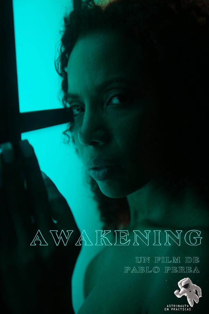 25-poster_Awakening.jpg