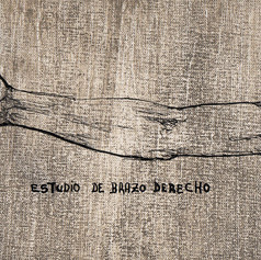 ESTUDIO DE ANATOMIA SEGUN BRAZO DERECHO