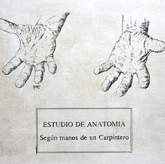 ESTUDIO DE ANATOMIA SEGUN MANOS DE CARPINTERO