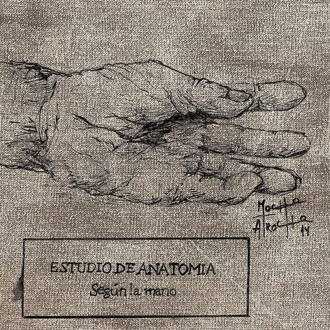 ESTUDIO DE ANATOMIA SEGUN LA MANO