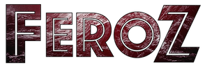 FZ-logo.png