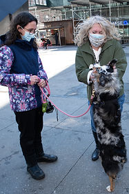 Elizabeth Cauto is on a NYC street meeting a woman in a purple coat and petting her dog.