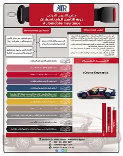 دورة التأمين العام للسيارات