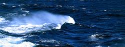 Local Sea Conditions