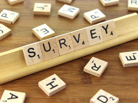 What do you ask on an employee engagement survey?