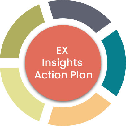EX Insights Action Plan.png