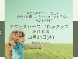 アクセス・バーズ1Dayクラス in小山