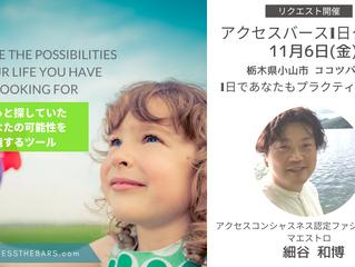 11/6マエストロ細谷のアクセス・バーズ1日クラスin栃木県小山市