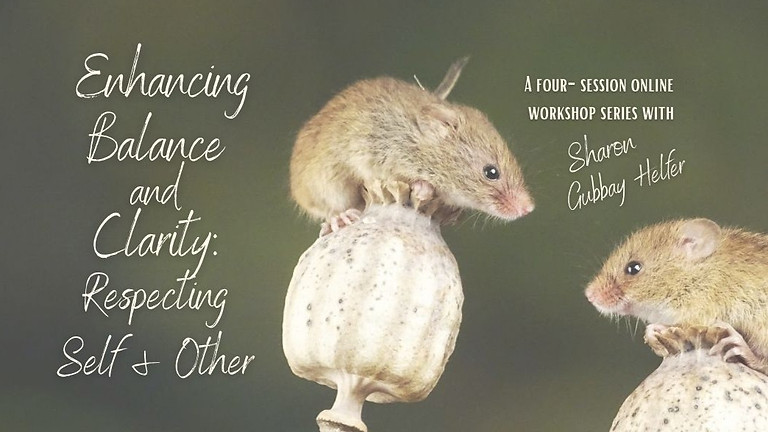Enhancing Balance and Clarity: Respecting Self and Other with Sharon Gubbay Helfer