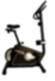 Bike_Vertical_–_TP710.png
