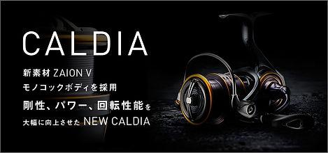banner_caldia.jpg