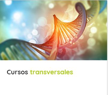 Cursos Transversales.png