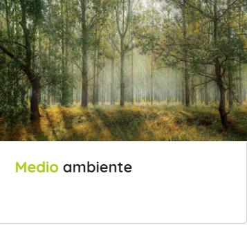 Medio Ambiente.png