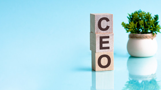 Be the CEO of Your Life: Build a Personal Board of Directors.