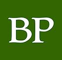 Bemidji Pioneer Square logo.png
