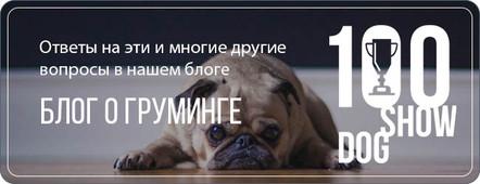 blog-2.jpg