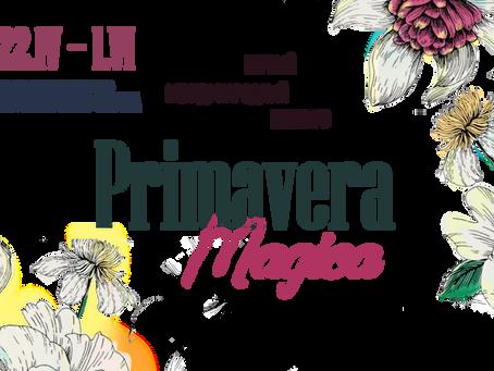 Primavera Magica. Результаты