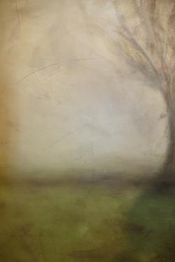 Paysage vert 92 x 73. 2018