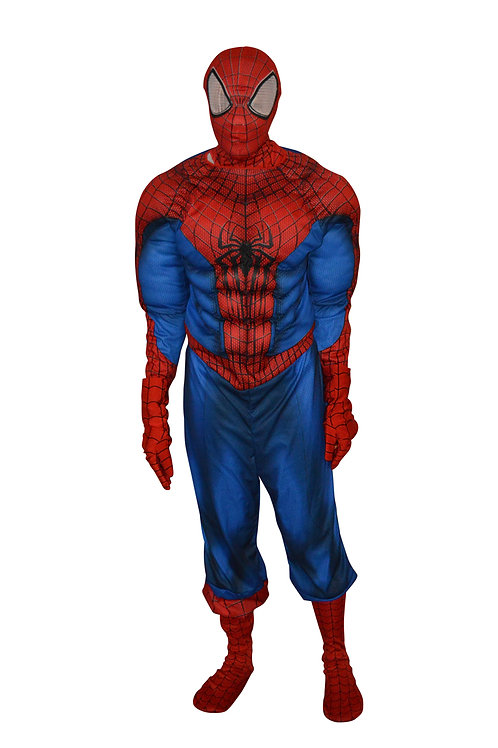 Spider man Costume rental