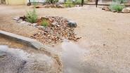 #rainwaterharvesting
