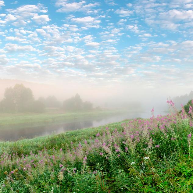 Магия солнечного тумана