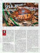 Zu Besuch bei Cuora galbinifrons auf Hainan