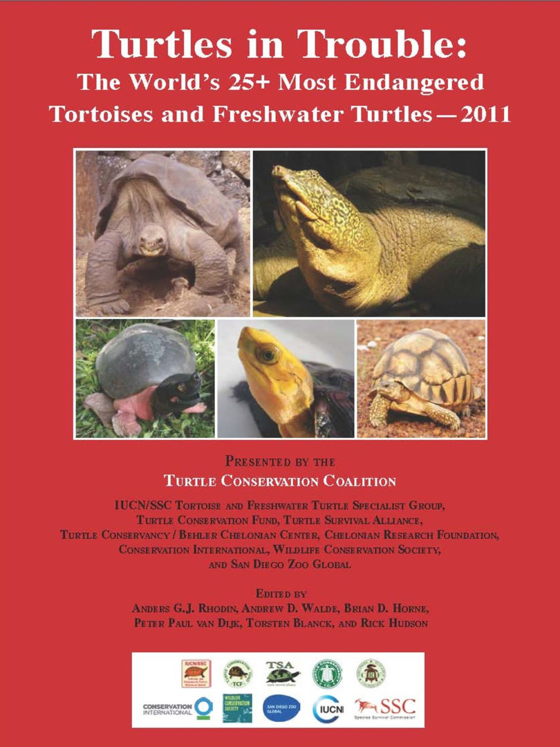 Turtles in Trouble 2011