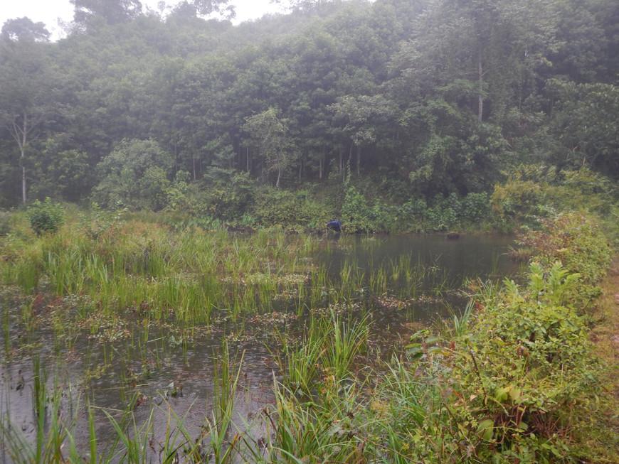 Possible Habitat of Cuora zhoui