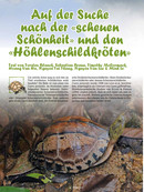 Auf der Suche nach der scheuen Schönheit und den Höhlenschildkröten Teil 1