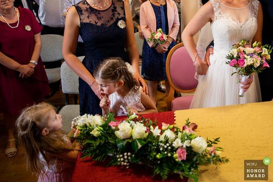 wedding-photographer-2546380.jpg