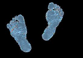 footprintsblue.png