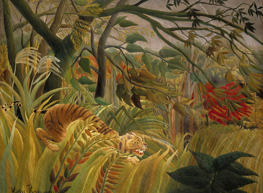 Tigers in the Storm