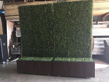 4 x 8 Hedge walls rentals