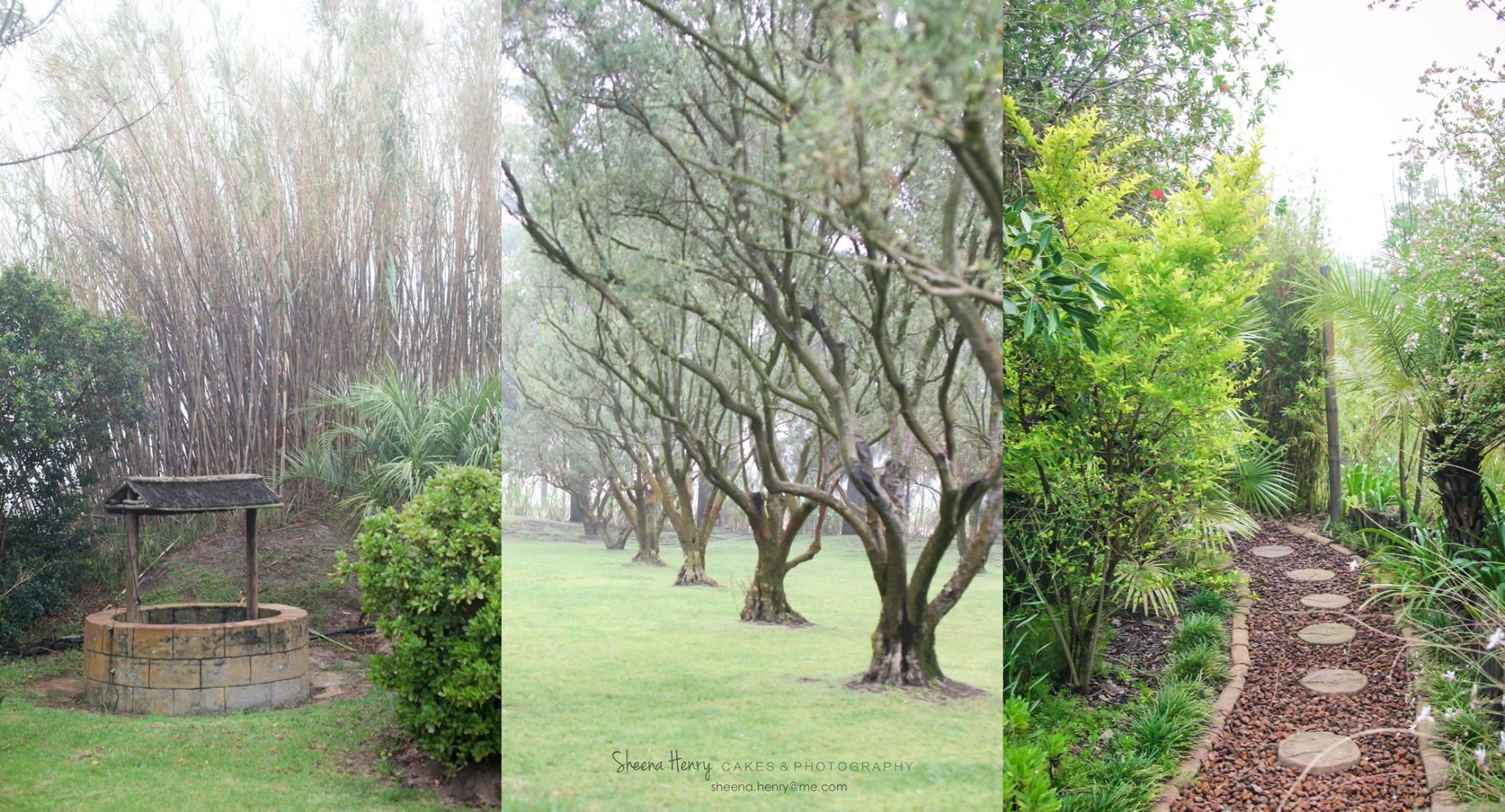 Beautiful Gardens 2