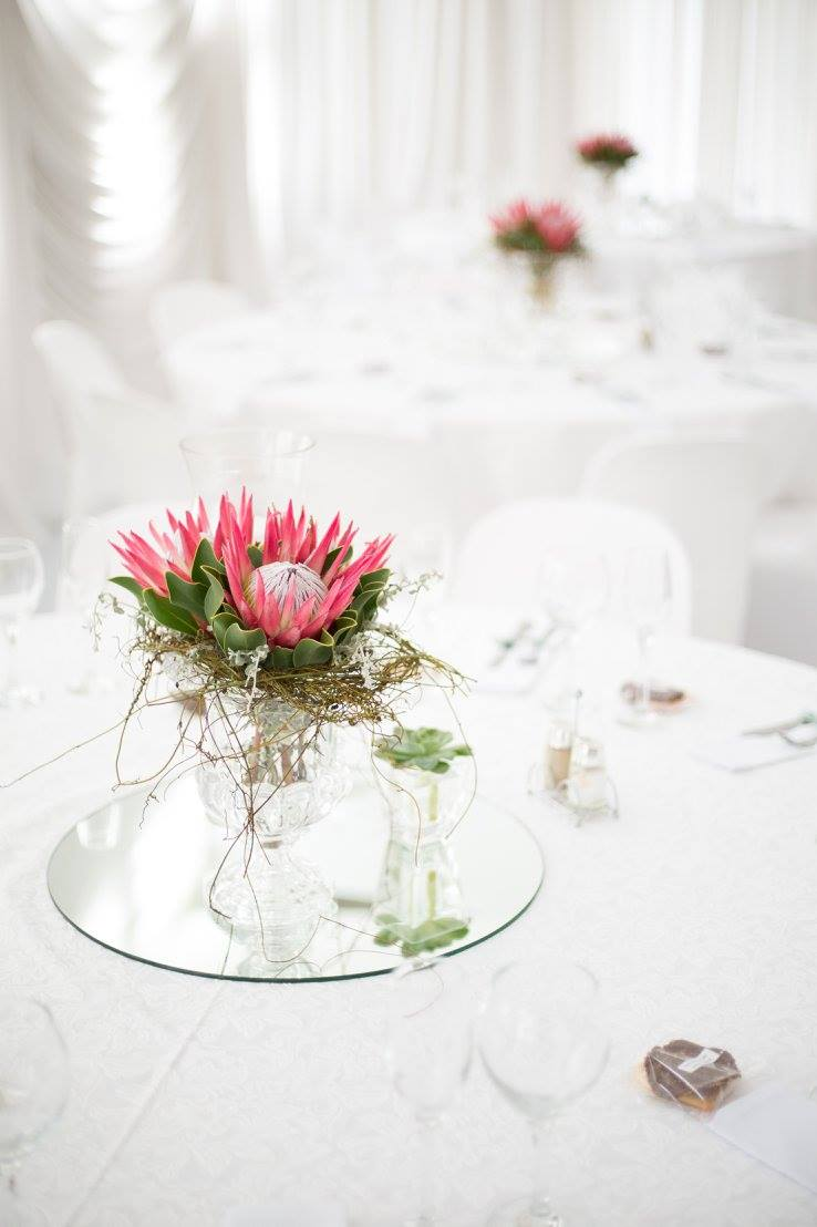 Beautiful Protea Center Pieces