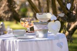 Morning Olive Grove Wedding