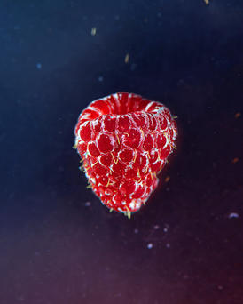 47 - Raspberry_web.jpg