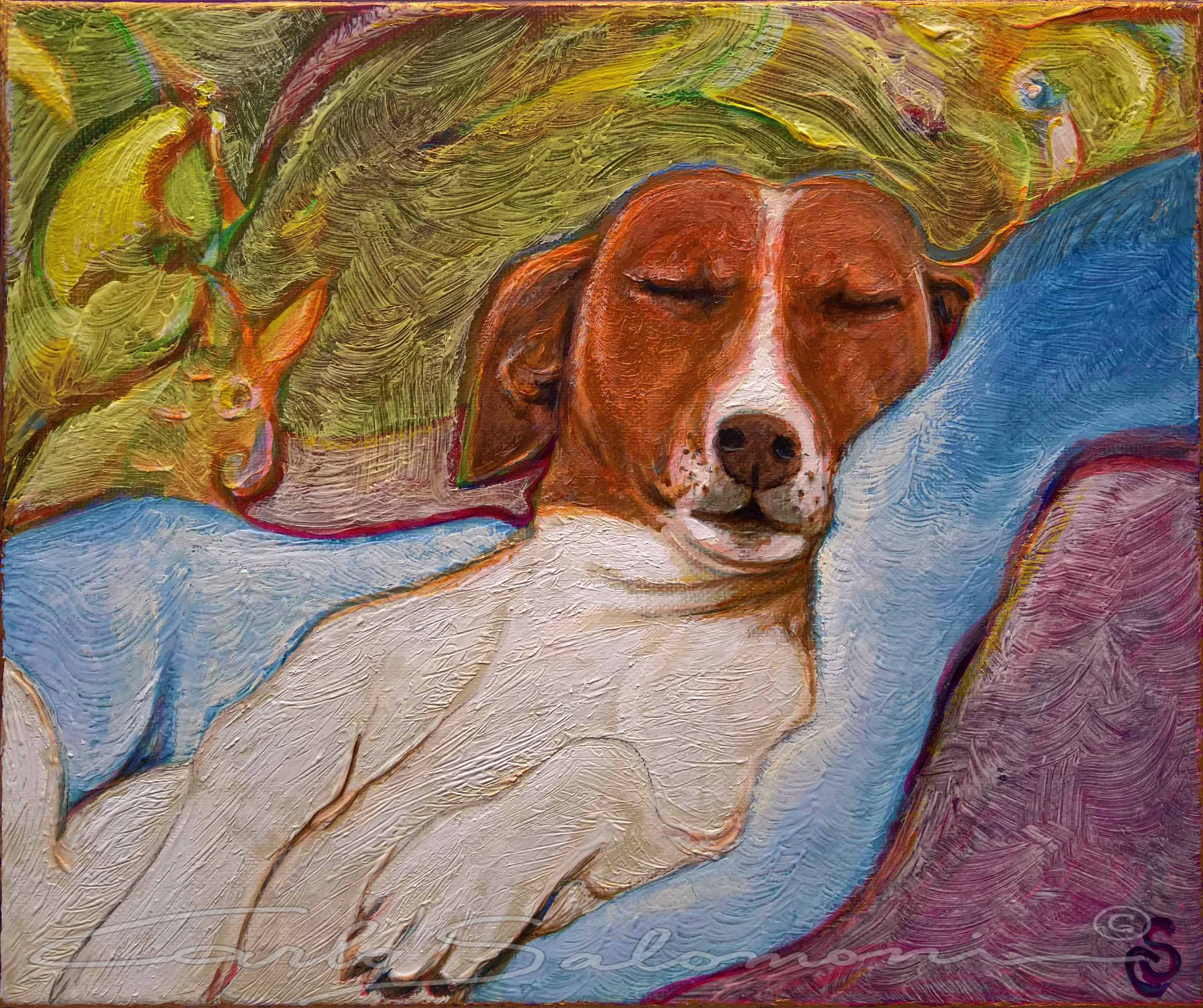 THE VAN DOG DREAMS