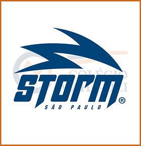 stormsp.jpg