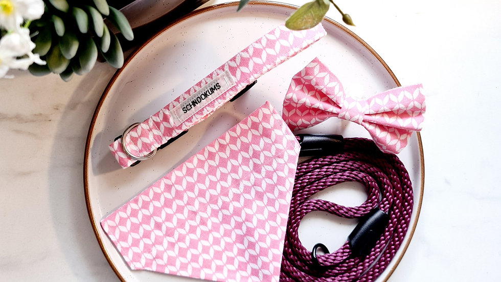 Pink Arrow Puppy Pack with Lead