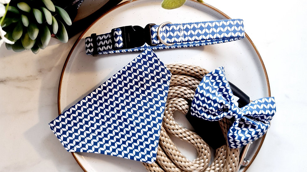 Blue Arrow Puppy Pack with Lead