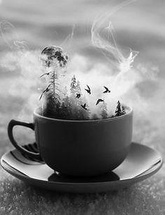 Enjoy a Tea Leaf Reading with Freya