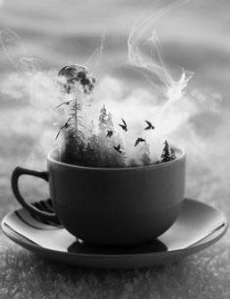 Dreamy teacup