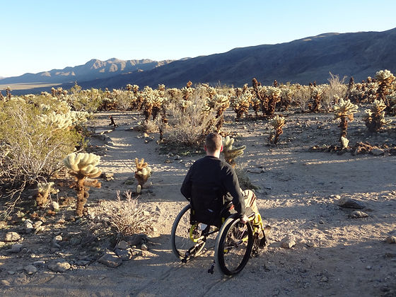 dave in wheelchair at joshua tree.JPG