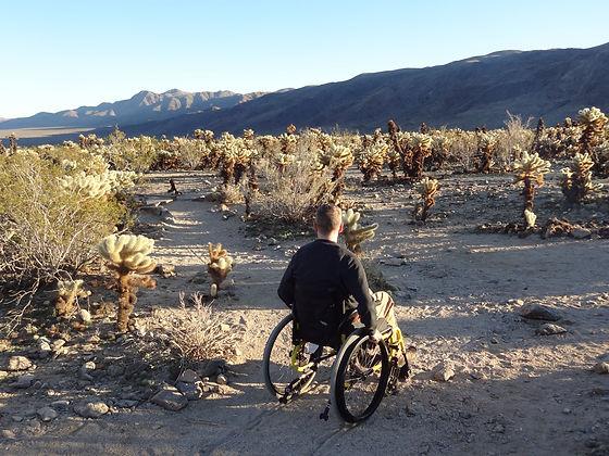 dave in wheelchair at joshua tree.JPG