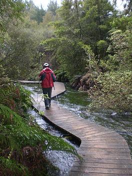 dave using trekking poles on wooden brid